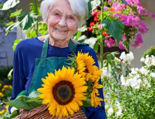 Kootenay Seniors: Home Help Support Worker/Light Duty Cleaner